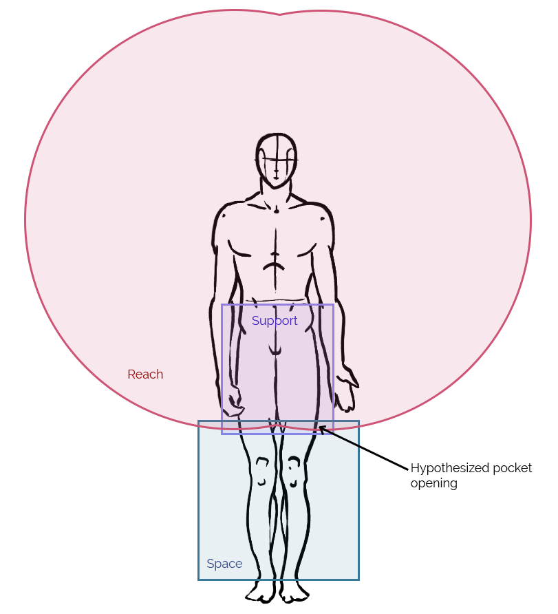 The human body with overlapping regions of reach, space, and support.